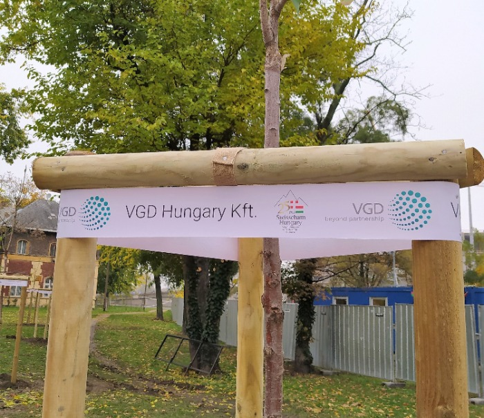 VGD joined the 25-years-old Swisscham Hungary to plant 25 trees in Népliget (Budapest)